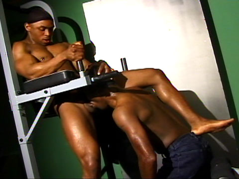 Now this is interesting way to use gym equipment. Looks like a lot more fun than using it to work out your abs too!  Rudy knows what I'm saying, and jumps into position to get his dick sucked by Ty Thomas. Rudy then moves the pair to the workout bench and pounds Ty's ass in a sweat inducing, muscle pumping fuck. Check out Rudy's veined up gunz - HOT! The guys only stop so Ty can eat out Rudy's amazing ass, before they go for a second round of hard dicking.