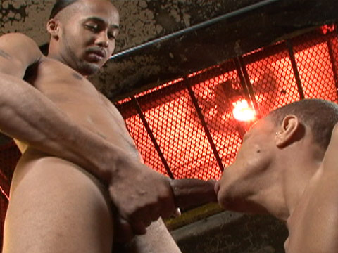 Dark Thunder gay black sex video